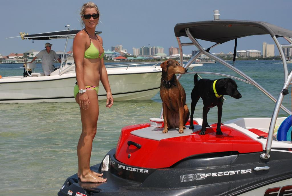 Pups on Board - '08 SeaDoo Speedster 150